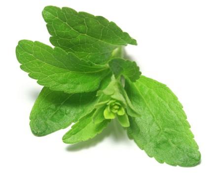 1386 1 - Stevia