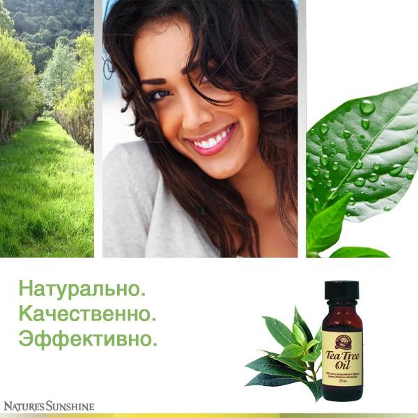 1777 5 - Tea Tree Oil