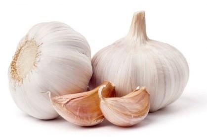 292 2 - HP Garlic