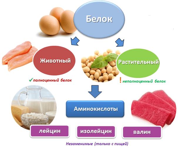 3664 24 - Free Amino Acids — Свободные аминокислоты (Пептовит)