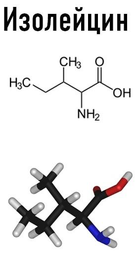 3664 26 - Free Amino Acids — Свободные аминокислоты (Пептовит)