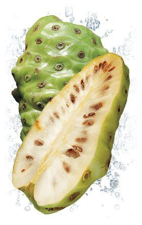 4066 2 - Nature's Noni Juice — Сок Нони