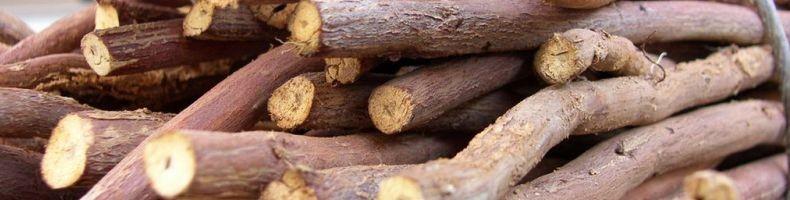 424 3 - Licorice Root — Корень Солодки