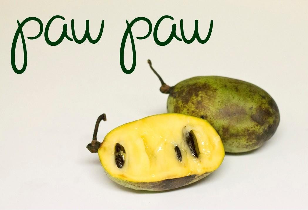 511 4 - Paw Paw — Пау Пау