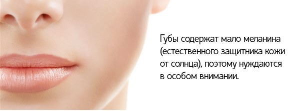 6036 11 - Lip Balm SPF 15 — Бальзам для Губ