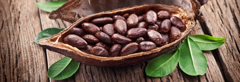 tratamentul articulațiilor de cacao