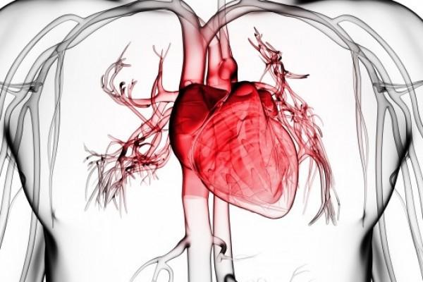 thumb.php  - Набор «Здоровое сердце»