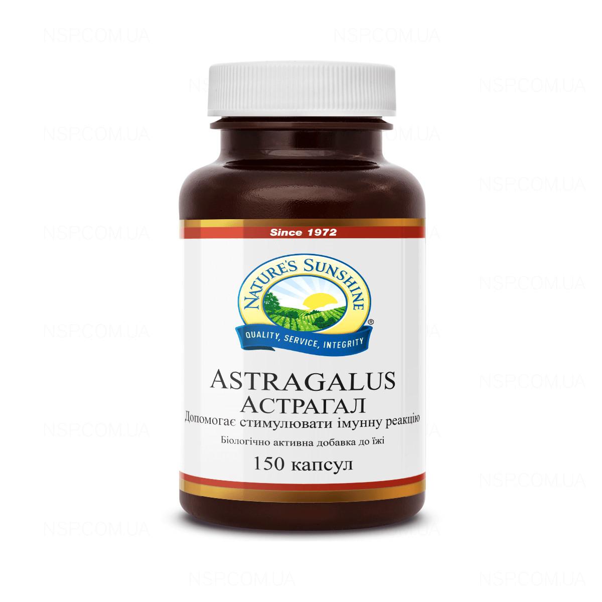 Astragalus, capsule, Secom | autordefrumos.ro Farmacie, Pierderea în greutate astragalus